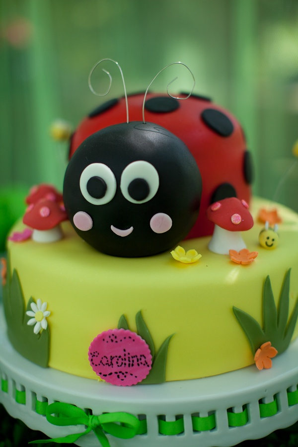 Ladybug Cakes And Cupcakes