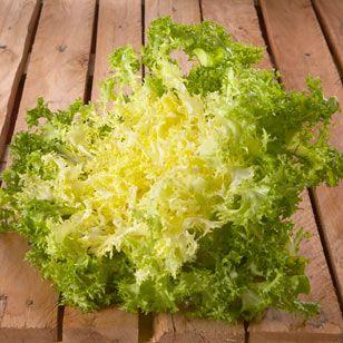 Der krause Friséesalat hat fransige, aber knackige Blätter, die leicht bitter und herzhaft-würzig schmecken. Friséesalat eignet sich gut für gemischte Blattsalate und fruchtige Dressings.