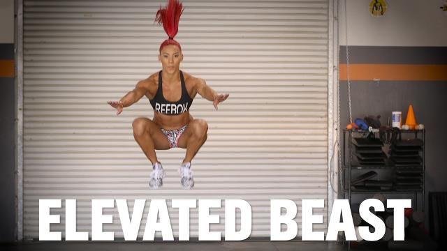 Elevated Beast