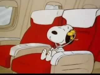 This is how happy Snoopy is to be flying on a plane. He listens to his music and enjoys the time he has with his best friend, Woodstock.