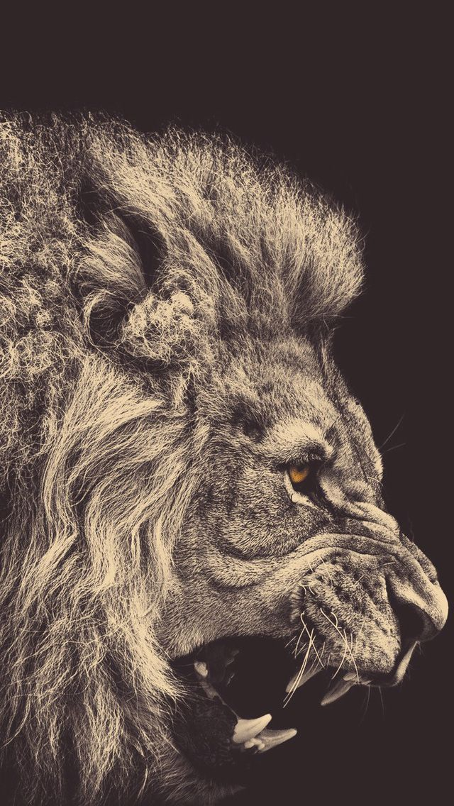 """I Peter 5:7-9 (KJV) """"Casting all your care upon him; for he careth for you. Be sober, be vigilant; because your adversary the devil, as a roaring lion, walketh about, seeking whom he may devour:"""""""