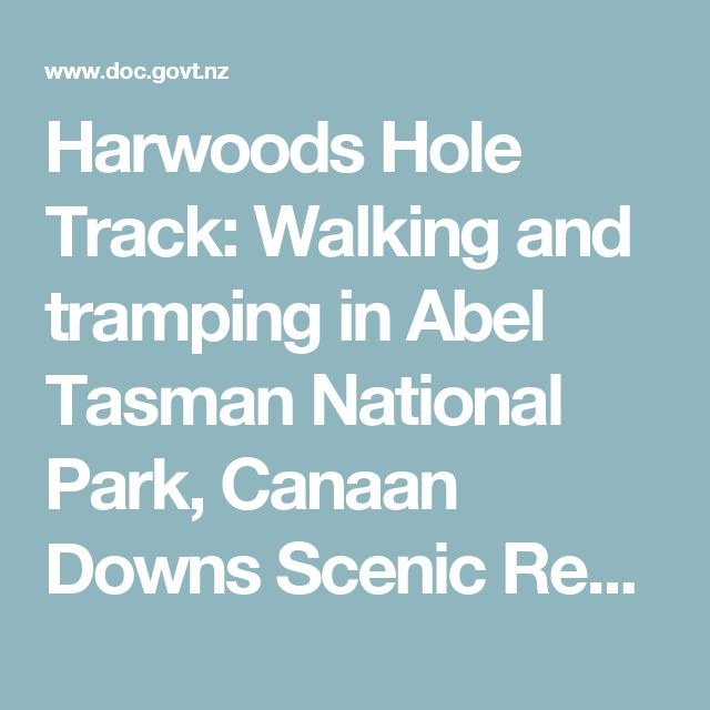 Harwoods Hole Track: Walking and tramping in Abel Tasman National Park, Canaan Downs Scenic Reserve