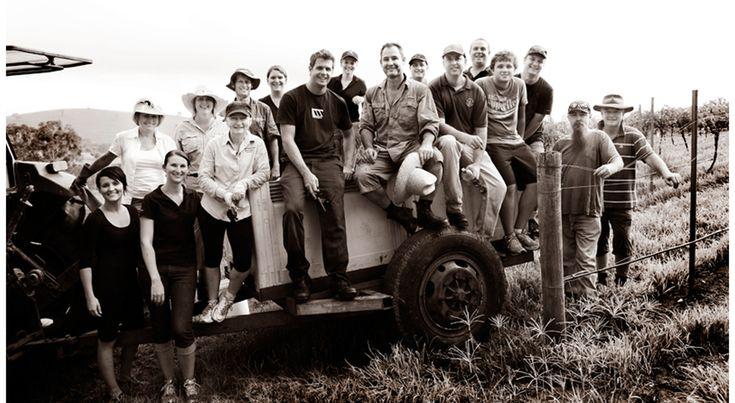 The Pepper Tree crew #winecountry
