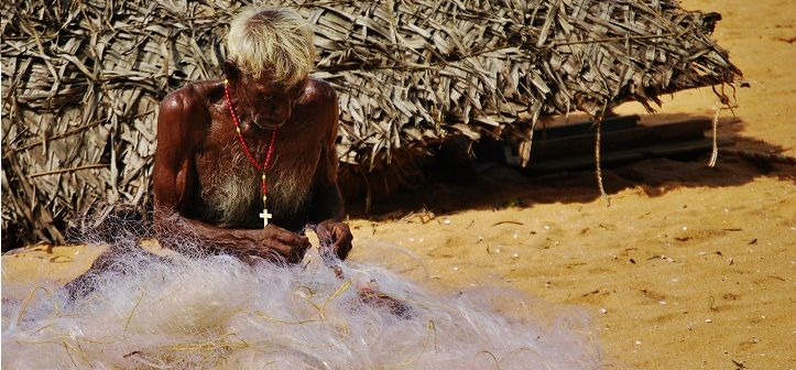 Il dolce languore dell'India del Sud http://blog.100days.it/kerala/