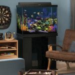 56 Gallon Marineland Fish Tank with Stand