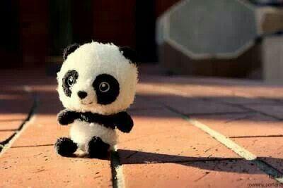 PANDA POM POM!!!! <3 so cute