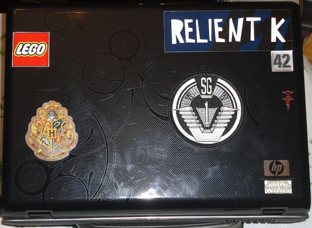 Laptop Cover. Laptops are expensive but very mobile and usefull...