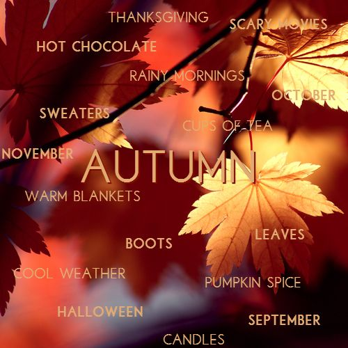 Let's Fall In Love with Autumn!