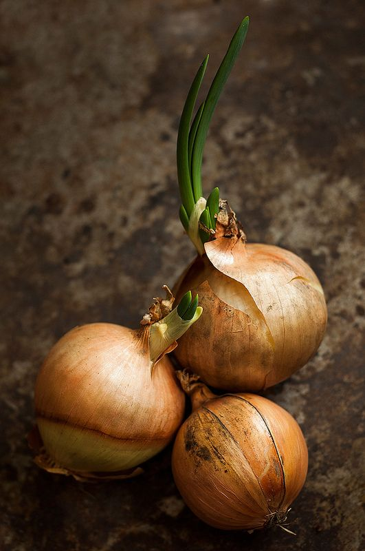 Onions. use thumb should be Firm/store in cool airy spot.peel- cool hands in water 1st. Cry= hold tip of Clean cloth under tap, wet Only one swipe over 1 eye -Hold new corner under tap-One pass over the other eye area