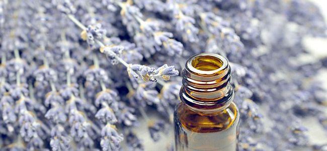 Lavendelöl Wirkung