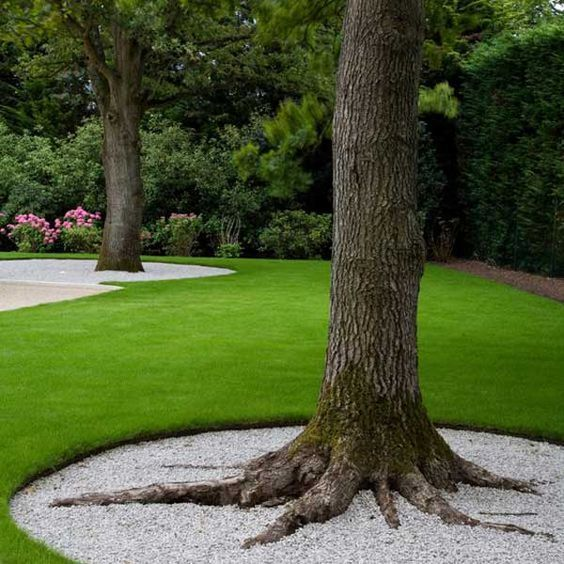 White Gravel Edging around a Tree for Landscaping.