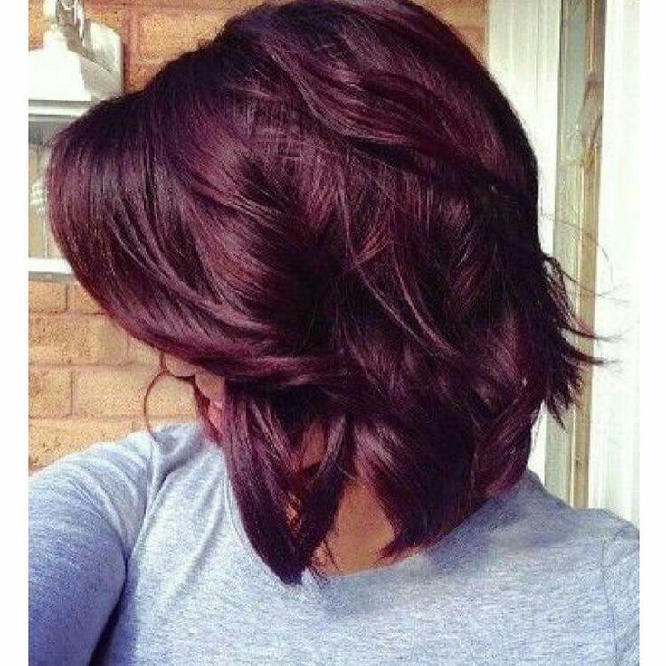 best chocolate cherry hair color best 25 chocolate