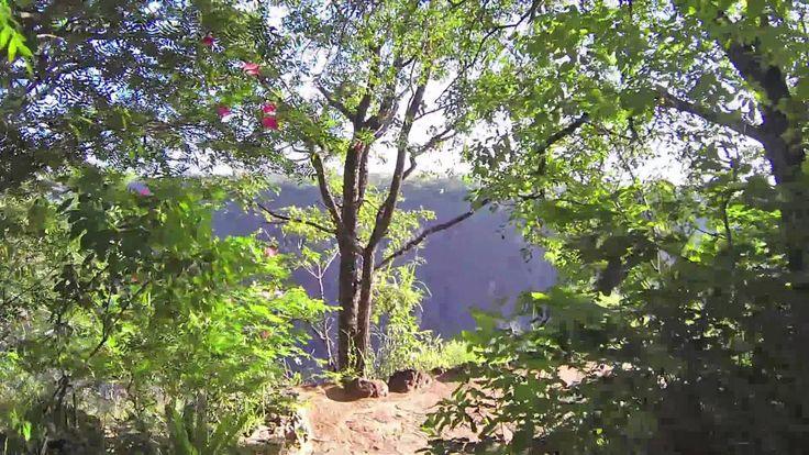 Gorges Lodge - grounds walkthrough