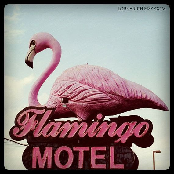 Flamingo Motel, Wisconsin Dells, Wisconsin by lornaruth  http://www.etsy.com/listing/88479099/5x5-flamingo-motel-wisconsin-dells?ref=sr_gallery_38_search_query=wisconsin_view_type=gallery_ship_to=US_search_type=handmadeFlamingos Motel, Wisconsin Prints, Pink Flamingos, Vintage Flamingos, Wisconsin Dells, Motel Wisconsin, Dells Wisconsin, 5X5 Flamingos, Motel Signs