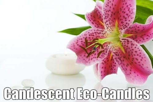 Candescent Eco-Candles is a small Kiwi business located in the sunny Hawke's Bay, with a commitment to creating top-quality, eco-friendly products that look and smell amazing!http://www.savvywomen.co.nz