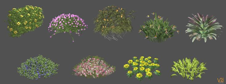ArtStation - Trees And Plants , esteban ariza