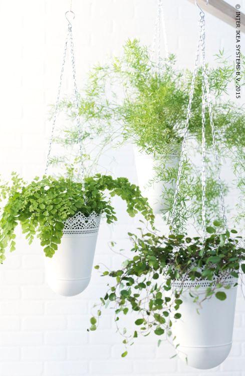 Skurar jardini re suspendue blanc cass int rieur - Jardiniere pvc blanc ...