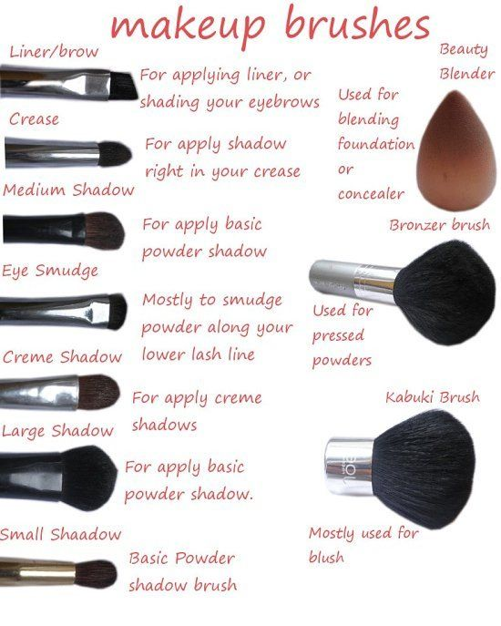 Handig voor als je niet weet waar die ene kwast voor is!  #brushes #makeupbrushes #beauty #makeup #beautyblender #brush #realtechniques #eyeshadow #highlighter #blush #bronzer #foundation #lipsticks #concealer #eyeliner #mascara #eyes #face #mac #nars #urbandecay #tutorial #essence #tarte #catrice #kyliejenner http://ameritrustshield.com/ipost/1545150068867508203/?code=BVxec0ThKfr