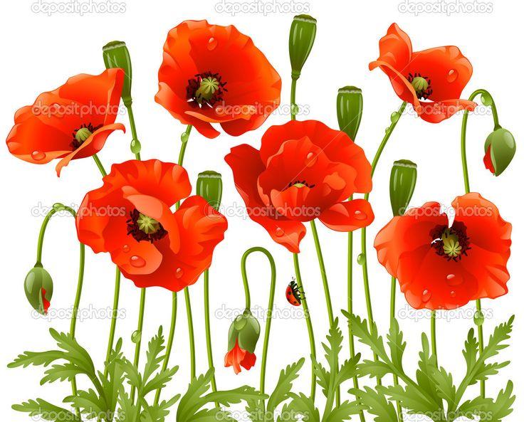 Taffeta Red Poppies