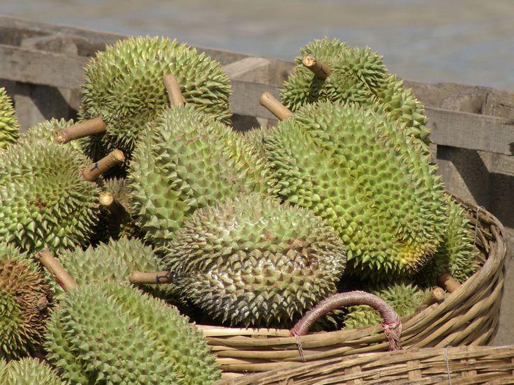mekongdelta durian