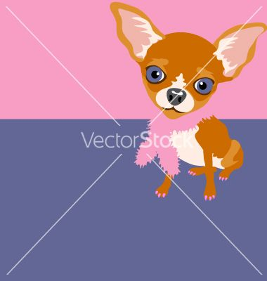 Chihuhua vector 1543998 - by DianeKMurphy on VectorStock®