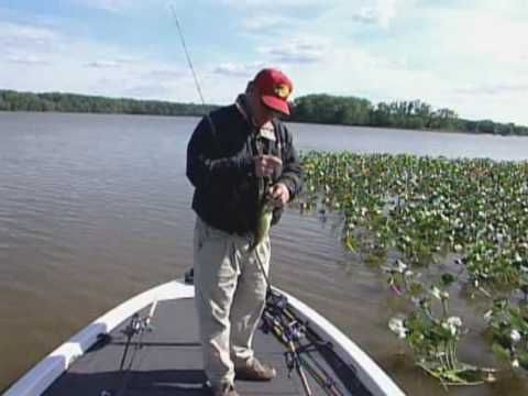 Bass in the Grass Tips on Fishing Aquatic Vegetation - YouTube