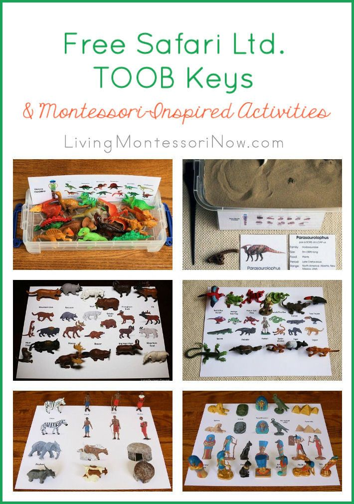 I'm sharing the free Safari Ltd. TOOB Keys and coordinating Montessori-inspired activities at Living Montessori Now.