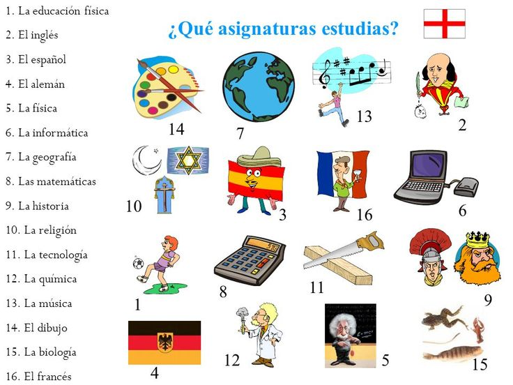 Qu asignaturas estudias las clase tiles escolares for 10 objetos en ingles del salon de clases