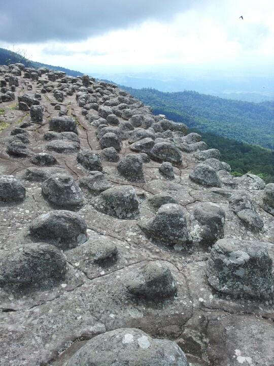 ลานหินปุ่ม ภูหินร่องกล้า Phitsanulok, Thailand