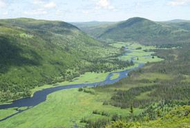 Grassy Place, Newfoundland and Labrador (Photo by Aare Voitk)