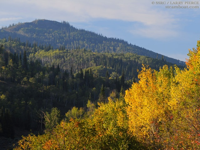 Fall colors in Steamboat 9/14/12: Fall Colors