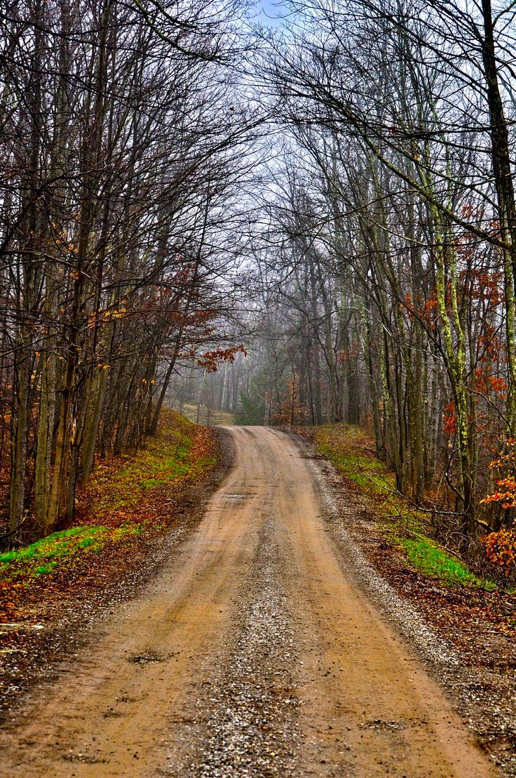 Country road [location and photographer unknown]