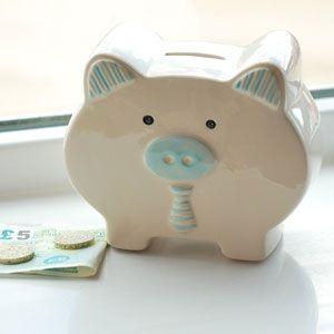 Pastel Pals Blue Pig Ceramic Money Box & 21 best Money Boxes and Piggy Banks images on Pinterest | Money ... Aboutintivar.Com