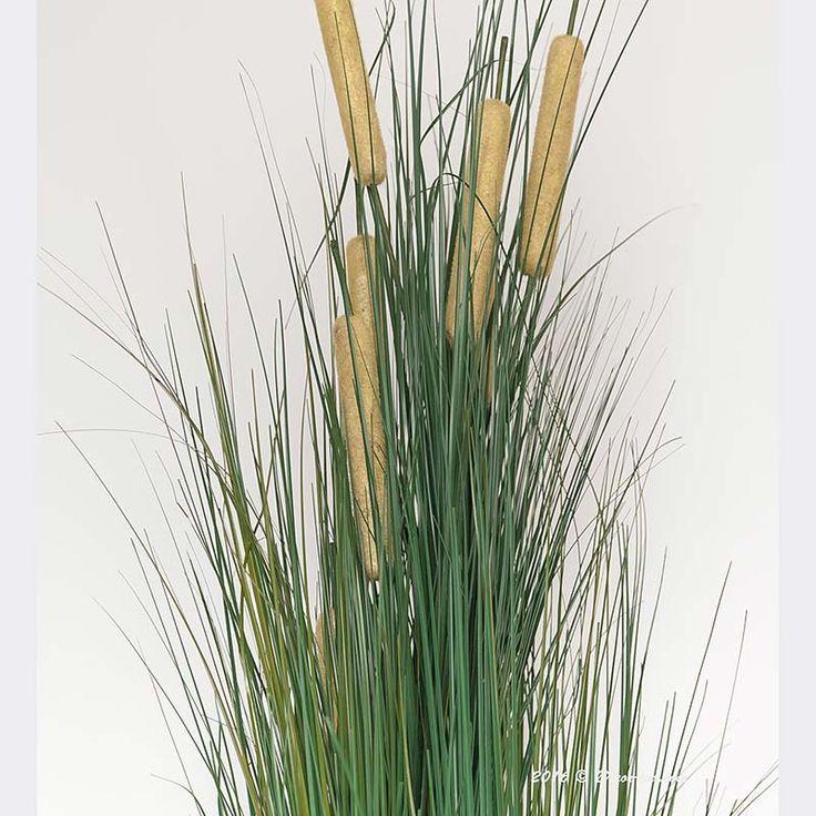 Трава с камышом.