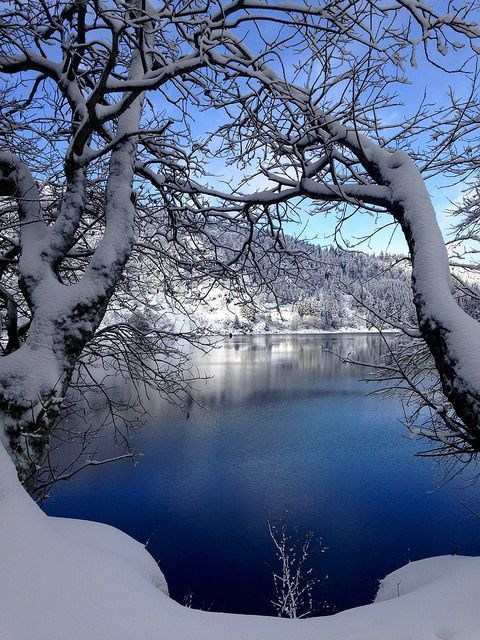 BEAUTIFUL WINTER SCENERY #snow lake tree wonderland blue sky beautiful landscape nature
