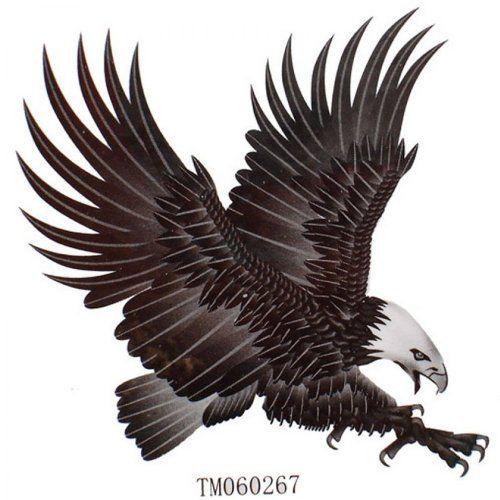 1000 Ideas About Eagle Tattoos On Pinterest Tattoos Tribal: 1000+ Ideas About Small Eagle Tattoo On Pinterest