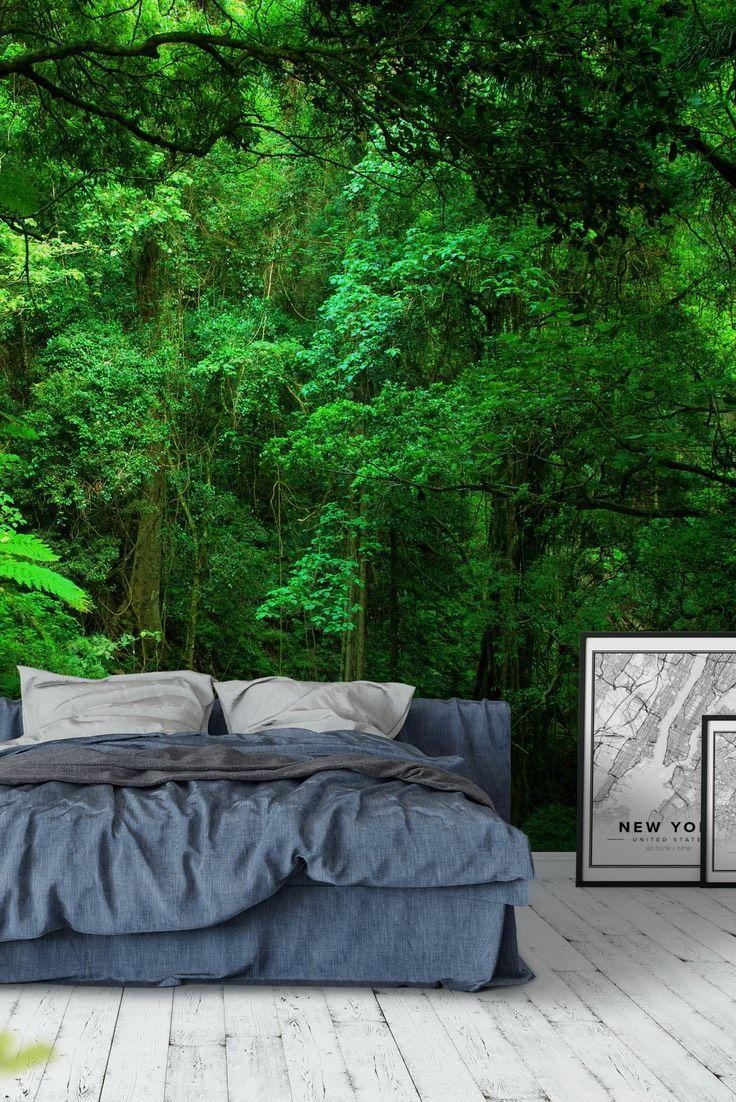 Green jungle Wall mural Jungle wall mural, Forest