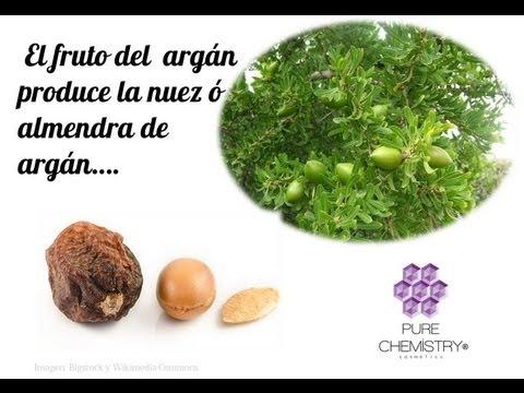 Historia y Origen del Aceite de Argán   Pure Chemistry® Argan Oil
