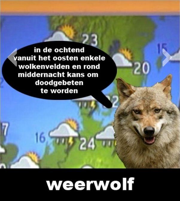 Weer wolf