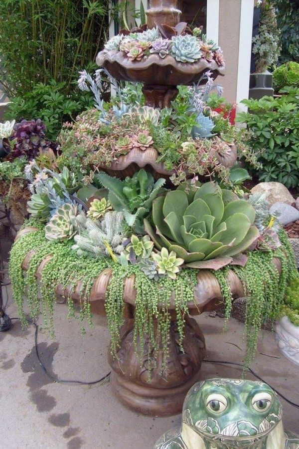 Creative DIY Container Garden Ideas you might consider for your home