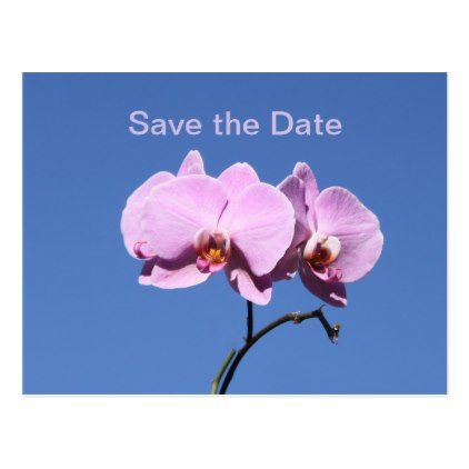 #Purple Orchid Save the Date Postcard - #savethedate #wedding #love #card #cards #invite #invitation