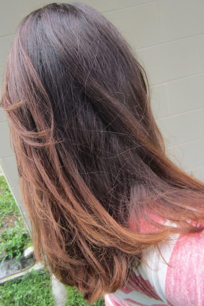 DIY hair lightening