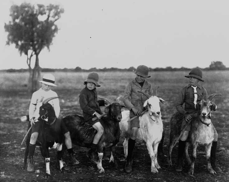 From State Library of Queensland: The photo of Owen McVey, Walter Grant, James Grant and Carl Vaughan was taken in Isisford in western Queensland and the boys might have been on their way to school or just having fun on the