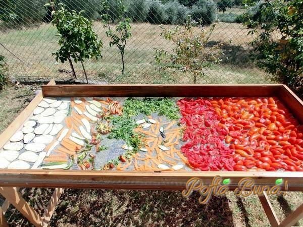 VEGETA DE CASA - cu legume uscate, o reteta simpla, ieftina, naturala, cu un gust deosebit. Sanatate curata, facuta acasa. #vegeta #delikat