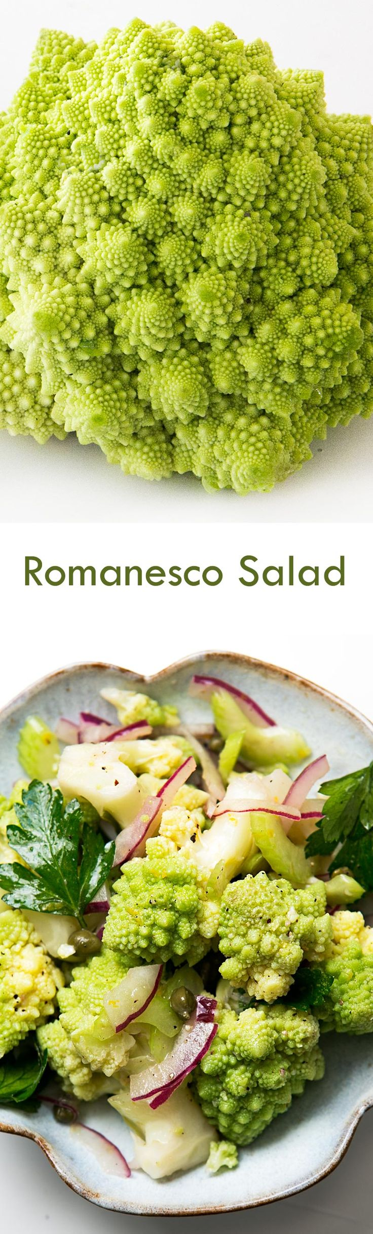 Romanesco broccoli salad! With steamed romanesco florets, red onions, celery, parsley, capers, marinated in vinaigrette. On SimplyRecipes.com