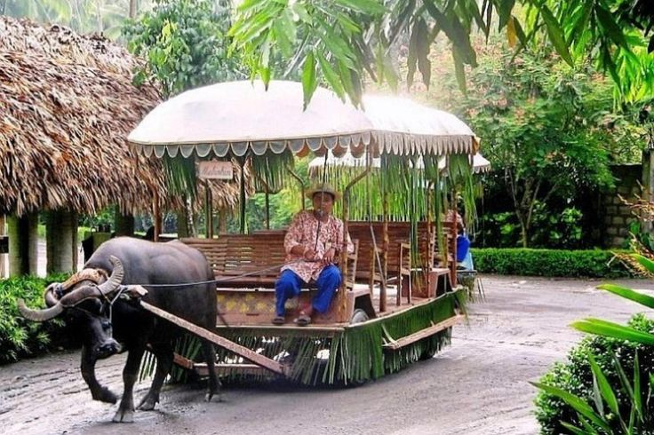 Enjoy a full day visit to a real coconut plantation and experience rural life in a resort setting