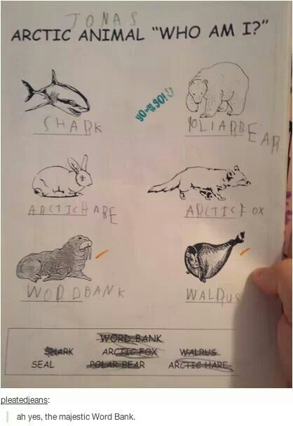 Word bank!!!!! Oh my goodness I won't stop laughing.