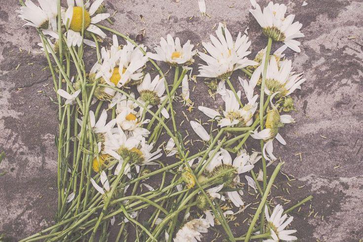Photo Collage – Mood board