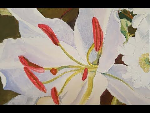 Timelapse: Gouache Painting of White and Pink Asiatic Daylily - YouTube