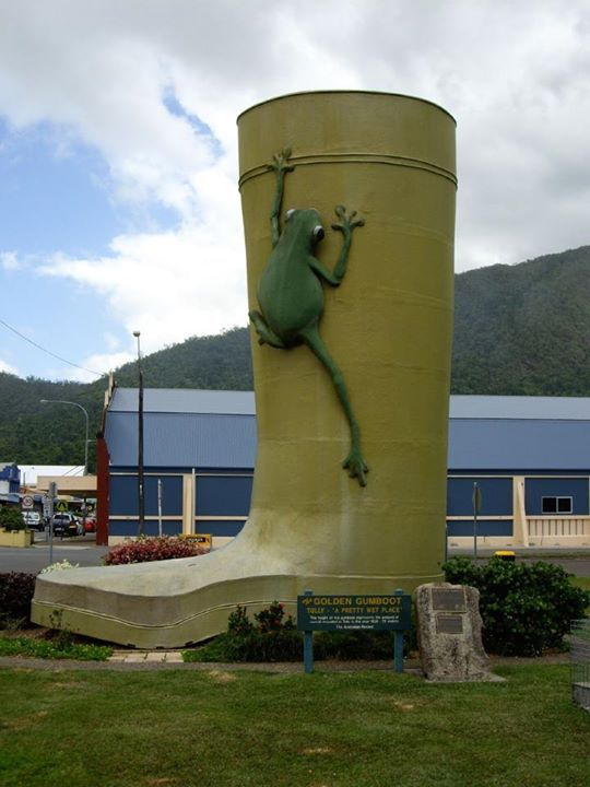 The Golden Gumboot is a competition between Tully, Innisfail, and Babinda for the wettest town of Australia. These towns are located in the Wet Tropics and on land that was previously covered by rainforest.  The winner for the competition (since 1970) was awarded a rubber boot, Tully - Photo by Claire Taylor